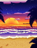 Sunset on beach with palms Stock Images