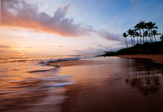 Sunset beach paradise. Tropical beach maui hawaii with palm trees and rocks Royalty Free Stock Images