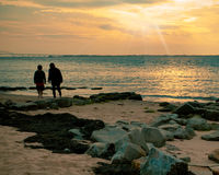 Sunset Beach with People Royalty Free Stock Photo