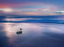 Sunset by the beach Royalty Free Stock Photography