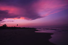 Sunset beach. A red sunset on the beach Royalty Free Stock Photos