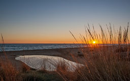 Sunset on the beach. The river and vegetation Stock Photography