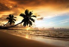 Sunset on the beach of sea Stock Photos