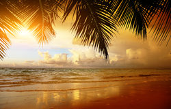 Sunset on the beach of sea Royalty Free Stock Images