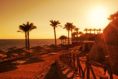 Sunset on the beach with sun umbrellas and beds Royalty Free Stock Photo