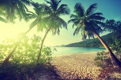 Sunset on the beach Takamaka, Mahe island, Seychelles Stock Photos