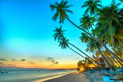 Sunset on the beach with tilted coconut trees,. Long sandy beaches and beautiful golden sky and romantic for the weekend resort royalty free stock photography