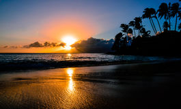 Sunset beach. Tropical beach at sunset with palm trees Stock Image
