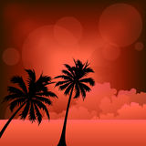 Sunset beach  vector Stock Images