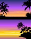 Sunset on beach. Vector illustration of a sunset on beach stock illustration