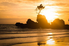 Sunset at the Beach. A view of the sunset behind a silhouette of rocks and a tree at the beach stock image