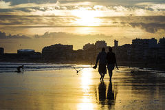 Sunset beachwalk. A man and a women walking arm in arm  in the beach on sunset while kid and birds are playing around. This atmotpheric beachwalk scene is Stock Photos