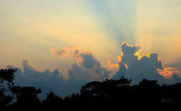 Sunset beam shining at Phu Kradueng National Park Royalty Free Stock Images