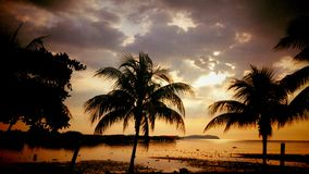 Sunset. Beautiful sunset with coconut trees Royalty Free Stock Photos