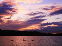 Sunset with beautiful colorful clouds over a lake stock image