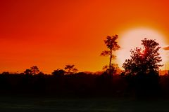 Sunset beautiful colorful landscape and silhouette tree in sky twilight time.  Stock Photography