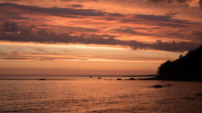 Sunset. Beautiful sunset in the forest. Gulf of Finland Royalty Free Stock Photo