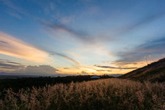 Sunset. Beautiful Sunset over the meadow Royalty Free Stock Photo