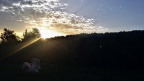 Sunset. Beautiful sunset and stone like hart stock photo