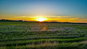 Sunset. Beautiful summer sunset at the countryside royalty free stock images