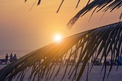 Sunset on beauty Arambol beach. Goa state, India Royalty Free Stock Photography