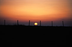 Free Sunset Behind A Fence Royalty Free Stock Images - 5606409
