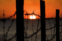 Sunset behind barbed wire, Stock Photo