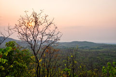 Sunset behind cloud at horizon of sky and mountain. With tree in front of view Stock Photography