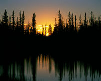 Sunset behind the forest Royalty Free Stock Photography