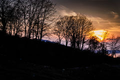 Sunset Behind Trees On The Hill Stock Photo