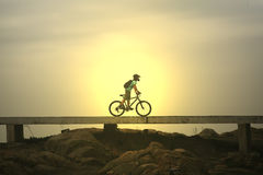 Sunset bicycle. Boy ride a bicycle in the sunset Stock Photography