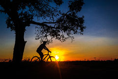 Sunset. Bicyclist at Sun down Royalty Free Stock Photos