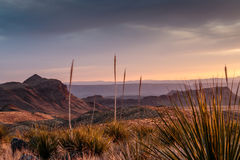 Sunset in Big Bend National Park. Sunset from Sotol Vista in Big Bend National Park among the yuccas and mountain desert Royalty Free Stock Photo