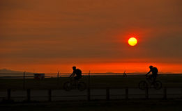 Sunset Bike Riders. A pair of cyclists enjoy the summer with an evening ride during a beautiful sunset Royalty Free Stock Photos