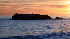 Sunset on Bird Rock below Heisler Park in Laguna Beach, California Royalty Free Stock Images