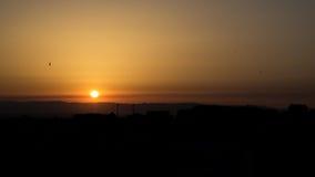 Sunset. Birds enjoying a hot sunset Royalty Free Stock Photo