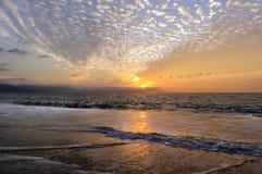 Free Sunset Birds Flying Royalty Free Stock Image - 71100336