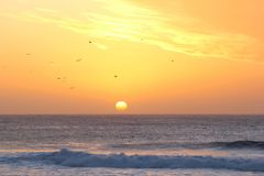 Sunset birds flying Atlantic ocean waves orange colors Stock Photo