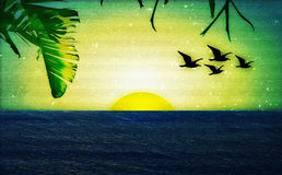 Sunset with Birds and Palm Trees Stock Image