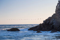 Sunset with birds at Pfeiffer State Beach, California Royalty Free Stock Photo