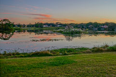 Sunset, birds and a small lake Royalty Free Stock Photo