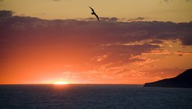 A sunset at the Black Sea stock photography