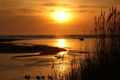 Sunset with boat and ducks Royalty Free Stock Photography