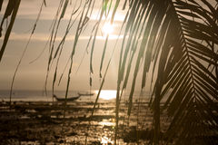 Sunset with boat and palm tree leaves Stock Images