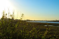 Sunset at bolsa chica wetlands. In Huntington Beach, Orange County California Stock Photos