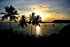 Sunset on bora bora. Silhouetted palm trees in the setting sun on sofitel private island in Bora Bora stock photos