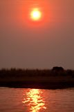 Sunset in Botswana's Chobe park. Stock Photo