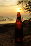 Sunset into bottle. The sun sets into the top of a beer bottle Stock Photography