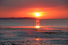 Sunset buoy. Photo of a spectacular sunset on the kent coast of whitstable with low tide leaving buoy silhouetted against night sky royalty free stock photo