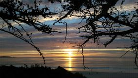 Sunset Through the Branches. Colorful skies are painted by the setting sun Stock Photo